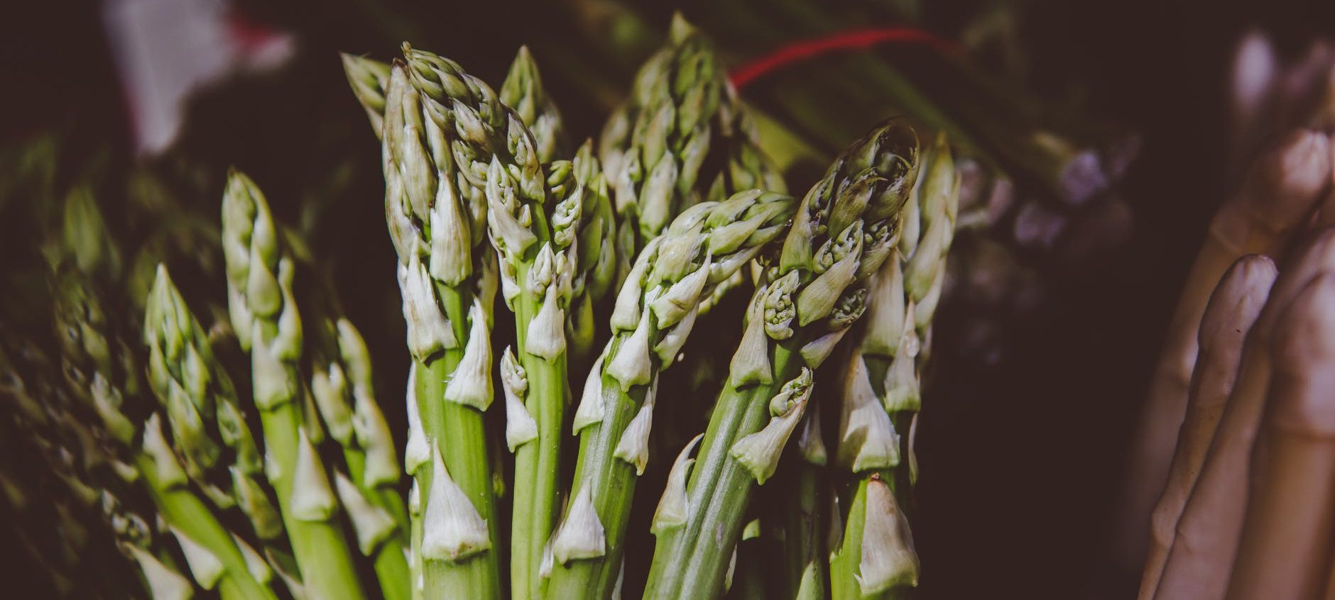 Pasta con asparagi e funghi – vegan